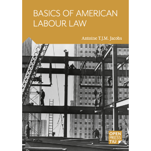 Basics of Amercian labour law